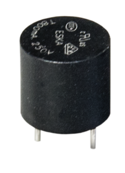 Sicherung 5,08 mm, 1A träge