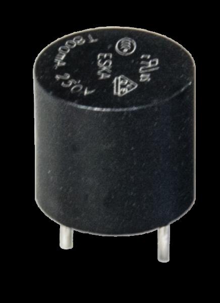 Sicherung 5,08 mm, 4A träge